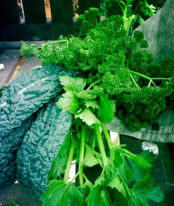 Kale, Celery & Parsley