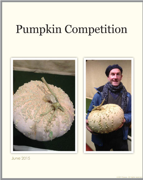 Pumpkin Competition 2015